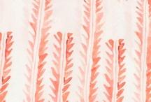 pattern / by Desiree