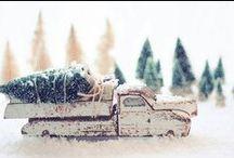 Christmas / by Little Muna