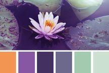 Color Palettes / by Debbie Ziegler