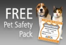 """ANIMALS: Dog Health / Miscellaneous dog health articles and products. See """"Animals: Dog Special Needs and Elderly Products"""" / by Leigh Sidell"""