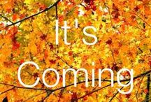 Autumn Time!!! / It's Fall Y'all!!! / by Marcy Wiggins