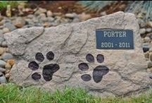 ANIMALS: Losing a Pet / Resources for when you have to euthanize a pet, grieve the loss of a pet, want to memorialize a pet, etc.  / by Leigh Sidell