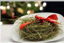 Christmas - Polish (Wigilia) / by Jeanie Machor