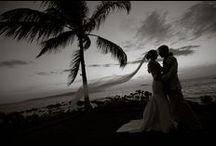 Wedding planning  / by Stephanie Hamilton