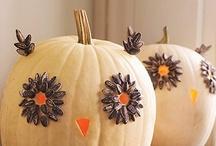Halloweenie! / by Anna Cunningham