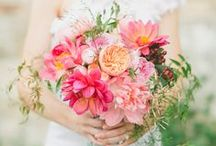 I+L's Wedding (French Laundry) / by Michelle Barrionuevo-Mazzini