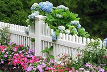 "In the Garden / ""Green fingers are the extension of a verdant heart."" ~Russell Page / by Sherri McMorrow"