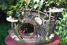 Fairy Houses / by Cosmo