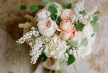 Wedding / by Kirsten Gould