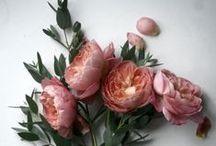 Fantastic florals / by Kristy Kyi (Flights of Fancy by Kristy)