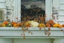 Fallen for Fall / by Becky Hill