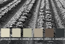 YOLO Colorhouse NOURISH color family / YOLO Colorhouse NOURISH color family notes: