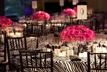 Wild Event Ideas / Great inspiration for your next animal themed party or wedding! How about hosting it at the Greater Vancouver Zoo with over 500 close animal friends?? / by Greater Vancouver Zoo