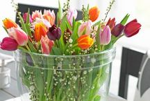 Flowers / by Maritza Zuniga