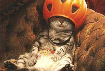 Halloween / by Cindy Weise