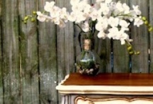 Painted Furniture / by Marjorie Pepmeier