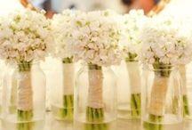 Family wedding ideas / by Melissa B.