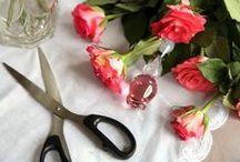 Valentine's Day Inspiration / by Lovehoney