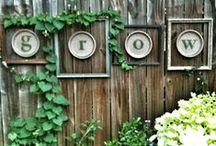 Garden Ideas / by Kylee Baumle