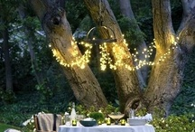 Garden decor / by Crystal Shenk Dry