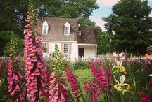 Spring to Life / by Colonial Williamsburg