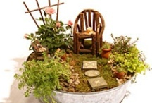 Gardening in Miniature / Ideas for miniature gardens, a lot of the ideas come from Two Green Thumbs Miniature Gardening. / by Lerryn Meza