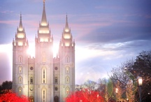 Dare to be Mormon / by Melissa Schmucker