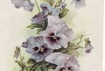 Art: Illustrations, Pattern, Design Elements, Posters, Graphs, etc. / Artistic illustrations, mostly botanical, but also birds and other things, posters including vintage artwork, and graphs  - lots of design inspiration here.   / by Rhonda Gillette
