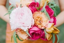 Wedding, Engagement & Invitations / by Rock Paper Scissors