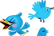 Tweet-Tweet, Tweet-Tweet, Tweet-Tweet ... Twitter Harmony / by The Sales & Marketing Connection