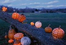 Fall into the Season / Thanksgiving, Halloween, Costumes, Dress-up / by Tammy Mathieu