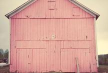 barns / by Julie Jarvies