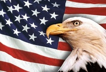 American Made - USA / by Sandra Sorrells