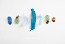 Feathers / by FacilySencillo