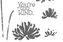Stampin Up Too Kind / by Amy Eller