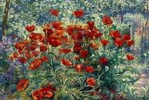 Poppies in art / by Joke van Dijk