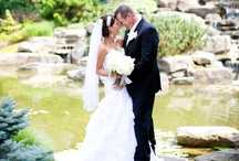 Waterfall Weddings / Frederik Meijer Gardens & Sculpture Park hosts stunning Waterfall Weddings in its Sculpture Park. / by Frederik Meijer Gardens & Sculpture Park Weddings