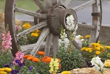 Landscaping / by Kim Germinaro