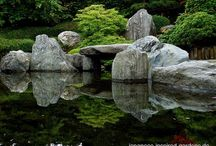 backyards & gardens / by Lorie Love