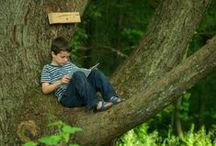 Heaven: A Good Book and a Place to Read / The greatest adventure anyone can take is through the written word. / by 7 Horses
