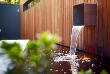 Green | Outdoors / by Linda Kummel