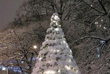 skyn HOLIDAYS / Inspiration and ideas for the holiday season! #StressLess / by skyn ICELAND