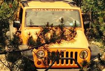 Jeep Wheelin' / Love my jeep and where it takes me.... / by Sharmon Noe