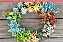Charming Wreaths / by Renee' Snow