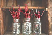 Mason Jars ~ Nature & Gardening / by Linda S