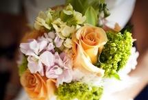 That Dream wedding / by Kristen Carroll
