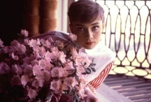 Audrey... / by Bethanie Russell