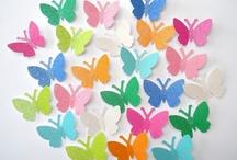 Butterflies / by Rach