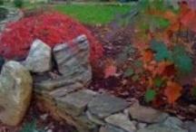 cottage zendo / city of richmond, VA: productive, diverse, yet calm / by Gentle Gardener Green Design