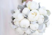 Wedding / by Vikki